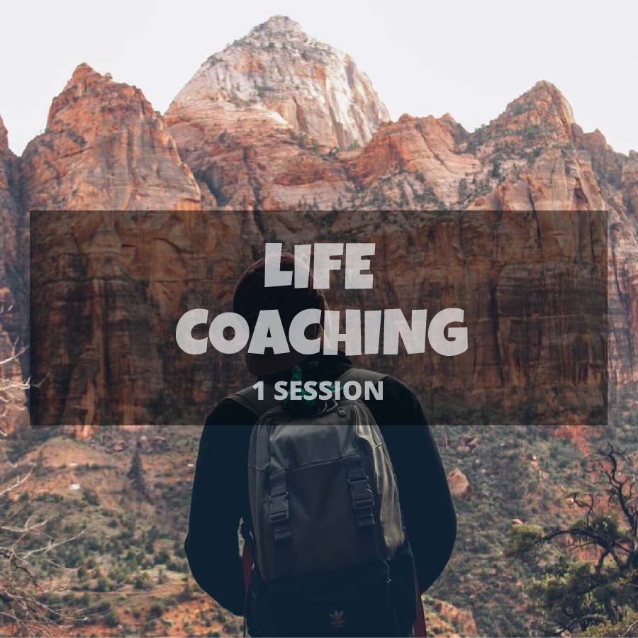 1 Life Coaching session